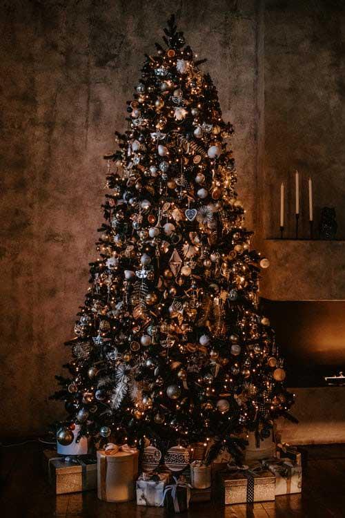 Prirodno božićno drvce
